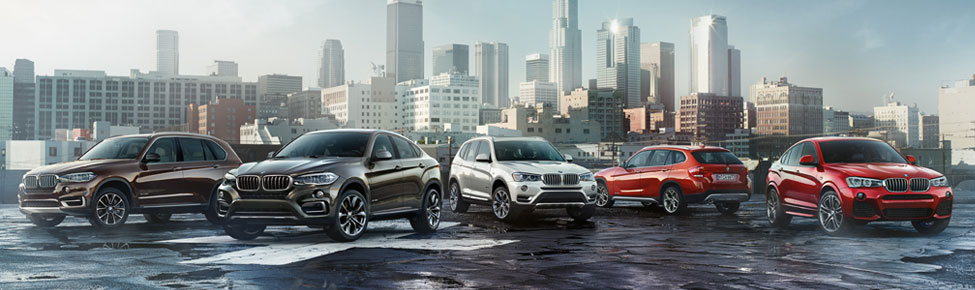 Worksheet. BMW X6 Information and Special Offers  Douglaston NY