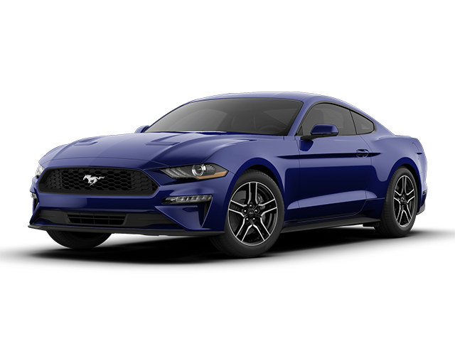 2019 Ford EcoBoost Premium Fastback - Special Offer