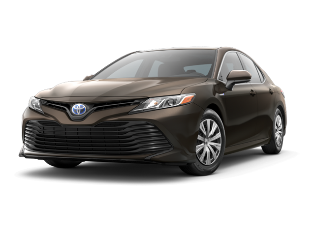2019 Toyota LE CVT - Special Offer